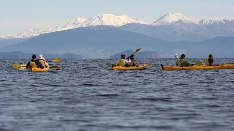 Western Bays Epic Full Day (Kayaking & Mountain Biking Combo)
